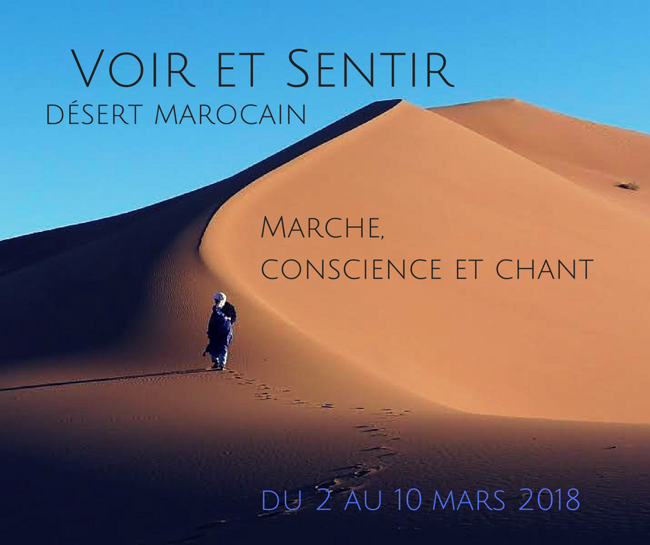 Voir et sentir I Désert marocain