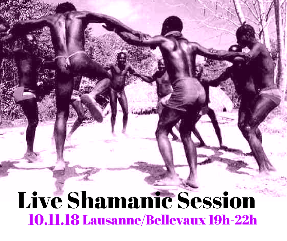 Live Shamanic Session I Lausanne